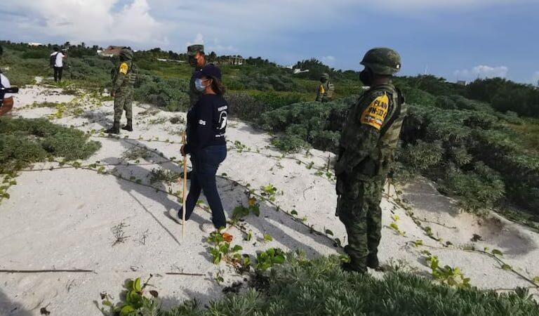 Ejército mexicano protege a tortugas marinas que anidan en Telchac Puerto.