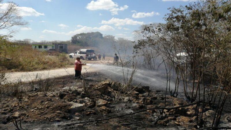 El local de la ganadera de Motul se salvó de quemarse de voraz incendio