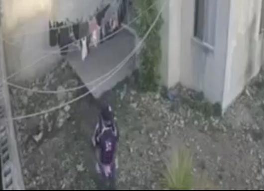 (Video) Cuida tus calzones del ladrón de Ciudad Caucel